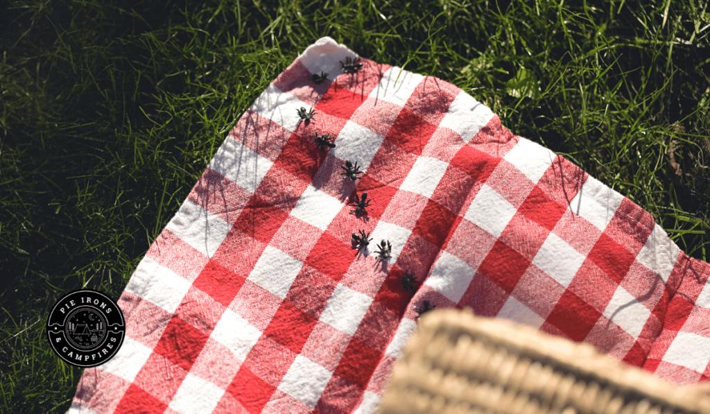 5 Natural Homemade Bug Repellents for Camping @ PieIronsAndCampfires.com