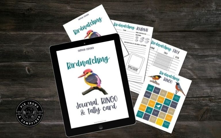 Bird Watching Journal and Bingo Game for Kids
